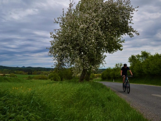 bike tour from prague